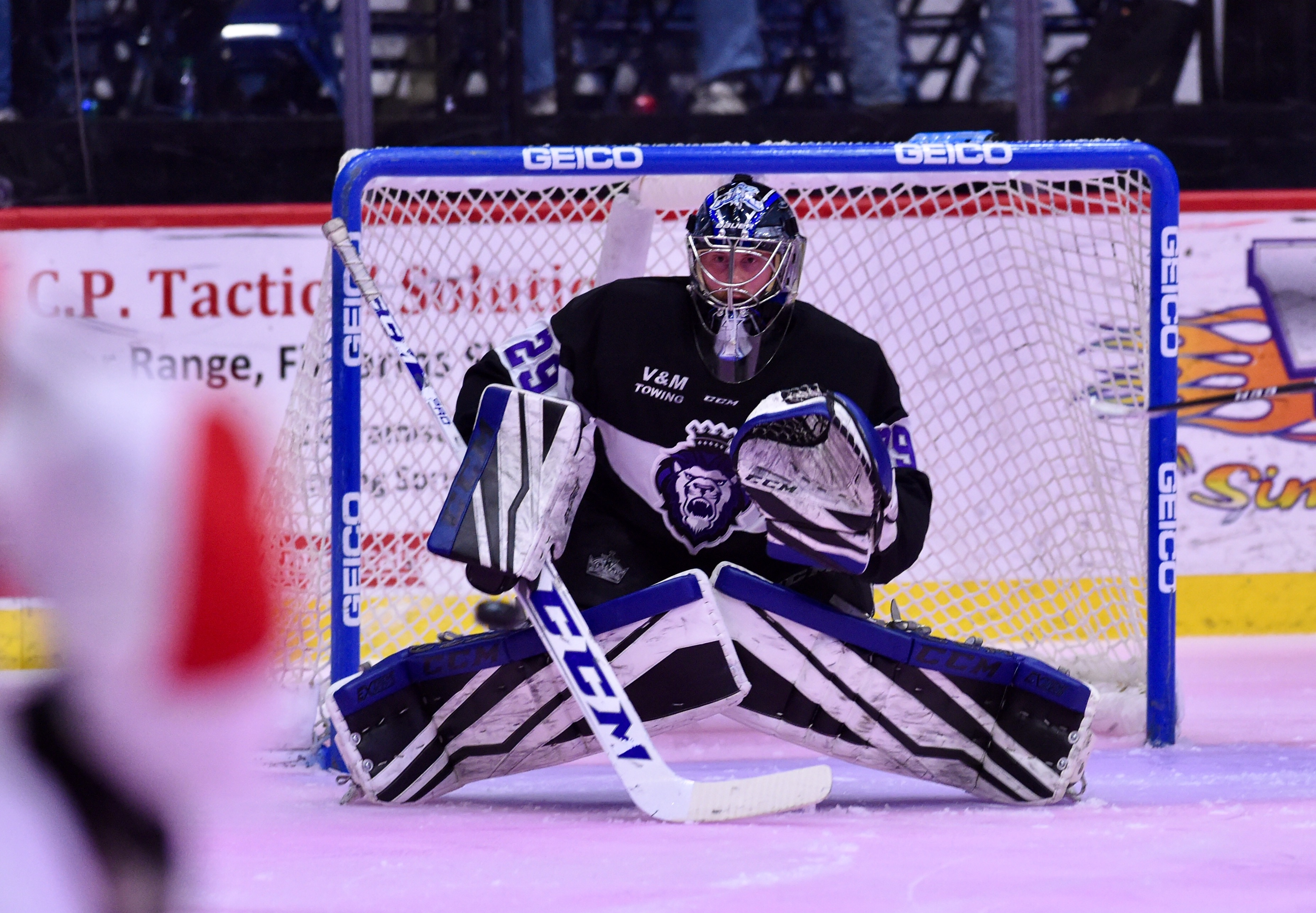 reading royals goaltender branden komm - february 20, 2018 photo on