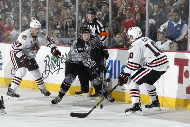 Chicago Wolves RW Danny Kristo vs. the Rockford IceHogs