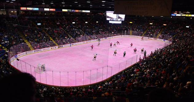 Reading Royals Pink in the Rink Game