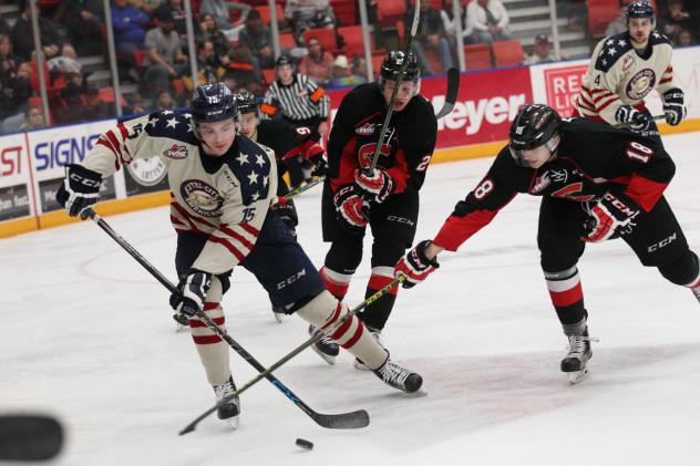 Tri-City Americans Chase down the Puck vs. the Prince George Cougars