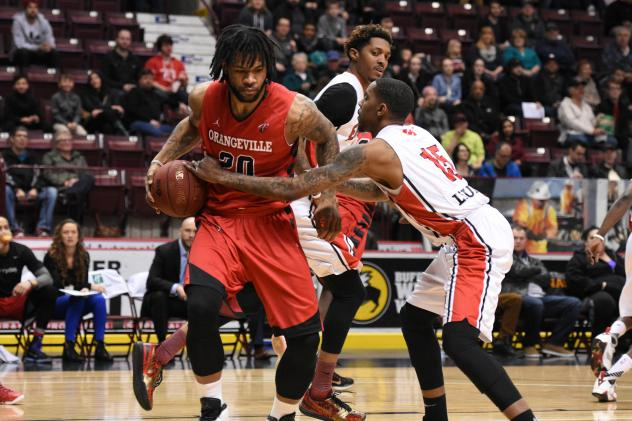 Justin Moss of the Orangeville A's vs. the Windsor Express