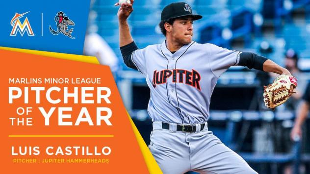 Luis Castillo and Brian Anderson Take Home 2016 Honors