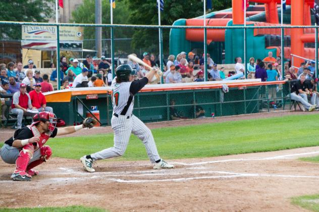 Bullfrogs Bury Woodchucks on Opening Day