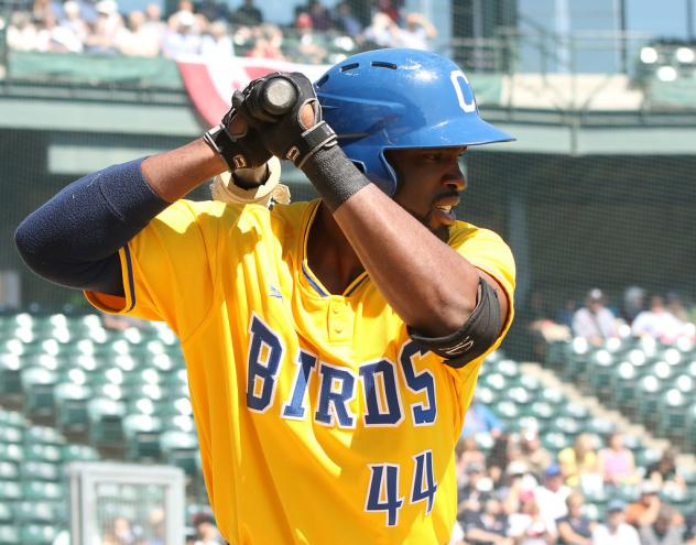 The Birds Become the Butchers in 14-4 Win over the Kansas City T-Bones