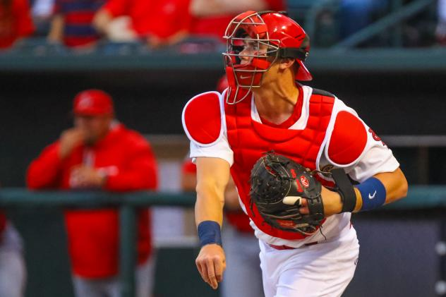 Kelly Tabbed Cardinals Minor League Player of the Month
