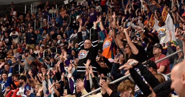 Solar Bears Newsletter Presented by Fairwinds Credit Union