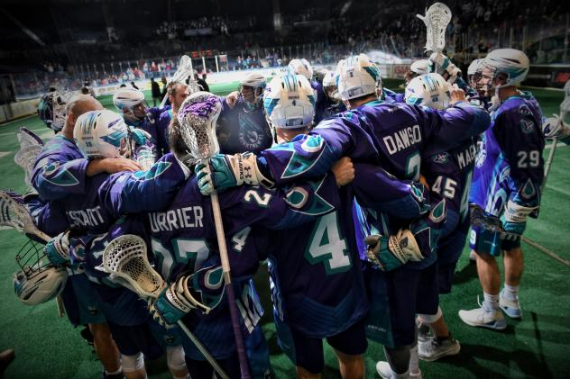 Rochester Knighthawks Team Huddle