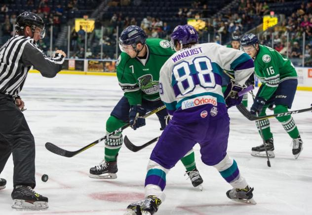 Florida Everblades face off with the Orlando Solar Bears