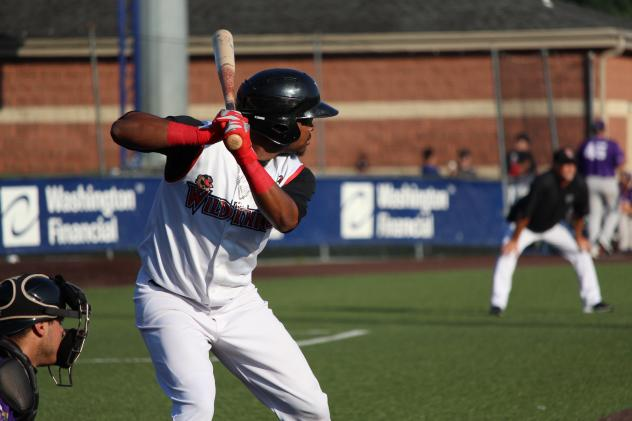 Washington Wild Things Outfielder James Harris at the plate