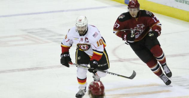 Tucson Roadrunners vs. the Stockton Heat