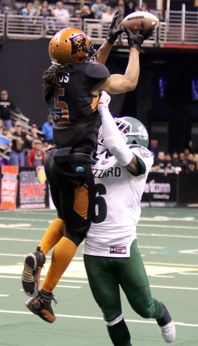 Arizona Rattlers Receiver Anthony Amos makes a contested catch