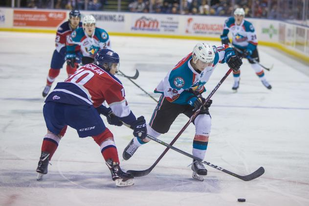 Kelowna Rockets race to the puck vs. the Tri-City Americans