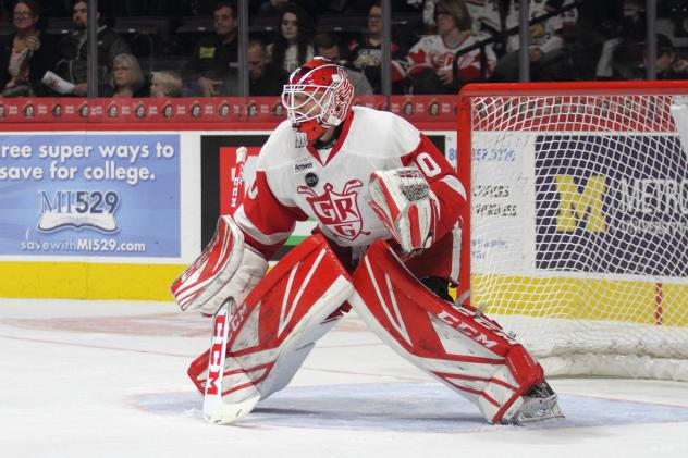 Grand Rapids Griffins Goaltender Tom McCollum in net