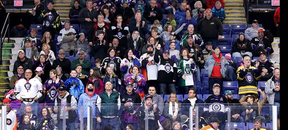 The crowd at a Reading Royals game