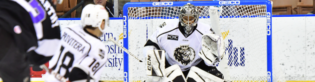 Manchester Monarchs goaltender Charles Williams faces the Reading Royals