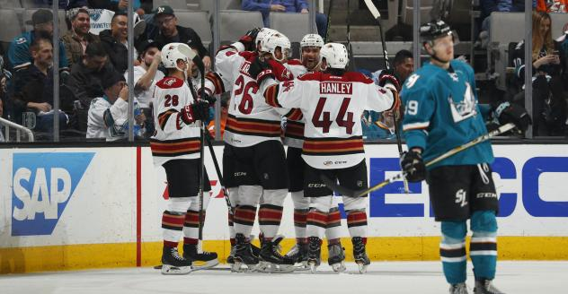 Tucson Roadrunners celebrate vs. the San Jose Barracuda