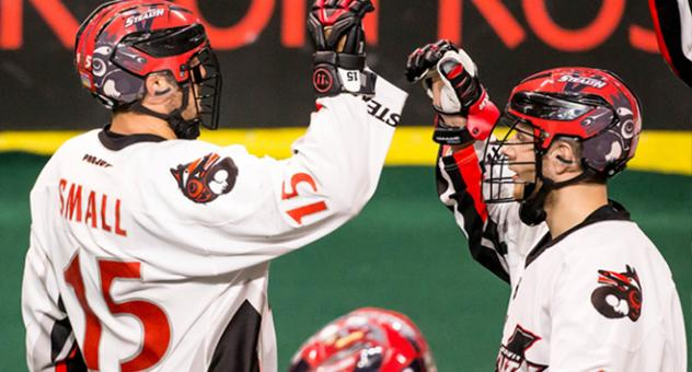 Corey Small of the Vancouver Stealth celebrates a goal