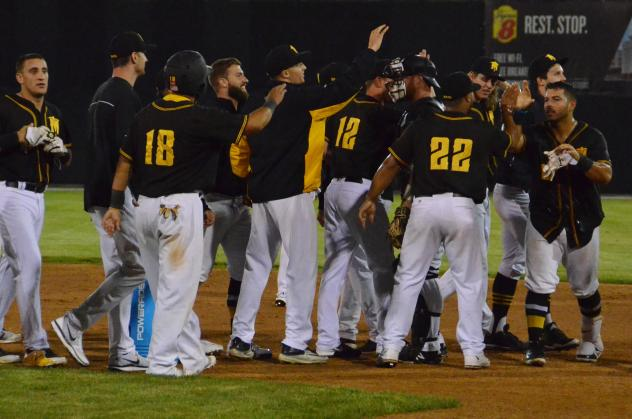 Sussex County Miners celebrate a walk-off win