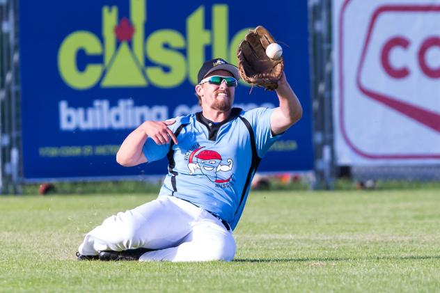 Colton Peha of the Victoria HarbourCats makes a sliding catch