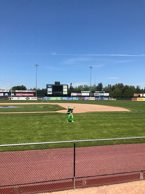Protective Netting at Centennial Field, Home of the Vermont Lake Monsters