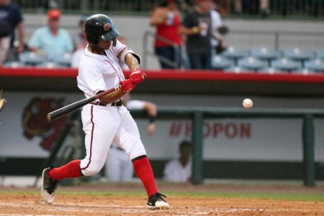 Florida Fire Frogs at bat
