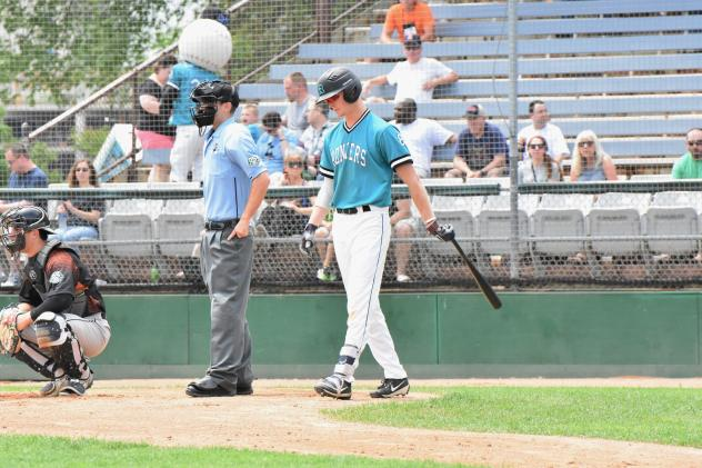 Michael Michalak of the Rochester Honkers approaches the plate
