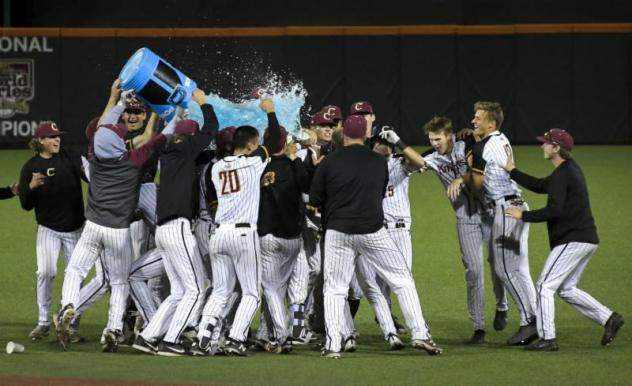 The Corvallis Knights celebrate their win in the North Divisional Series