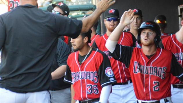 Hickory Crawdads celebrate in the dugout