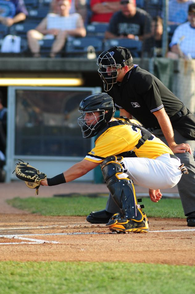 Catcher Reese McGuire with the West Virginia Power