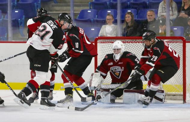 Vancouver Giants goaltender Braedy Euerby vs. the Prince George Cougars onslaught