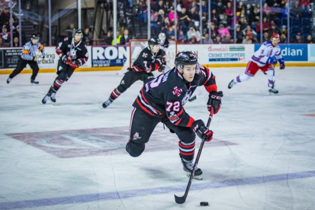 Niagara IceDogs in preaseason play