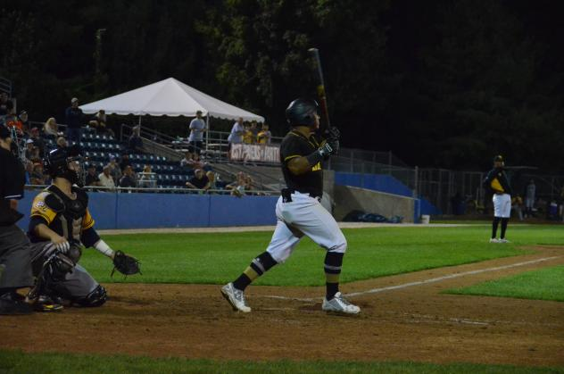 Martin Figueroa of the Sussex County Miners homers to win the Can-Am League championship
