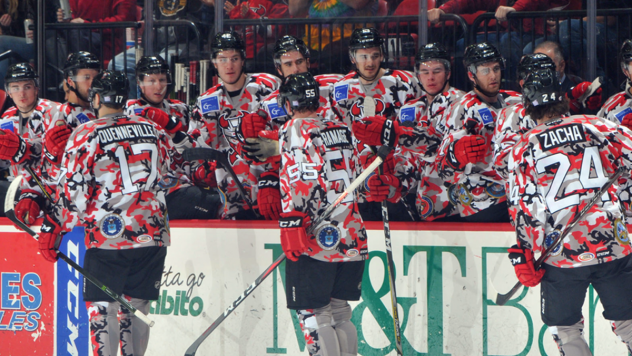 Binghamton Devils celebrate with the bench