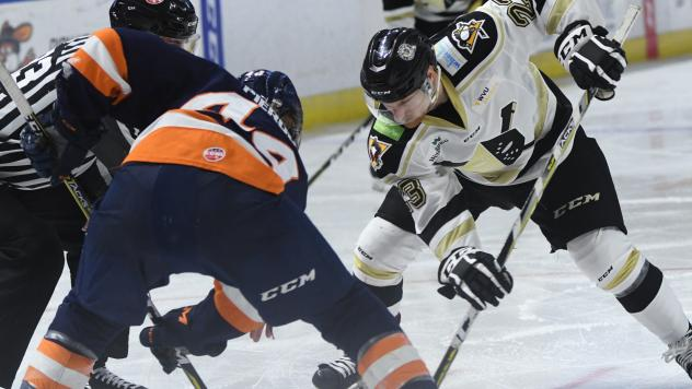 Greenville Swamp Rabbits face off with the Wheeling Nailers