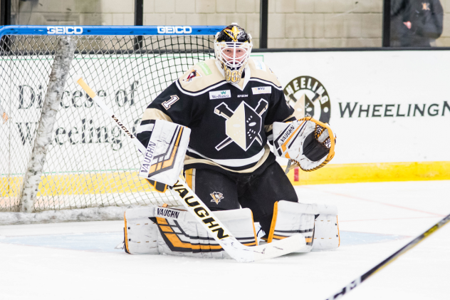 Goaltender John Muse with the Wheeling Nailers