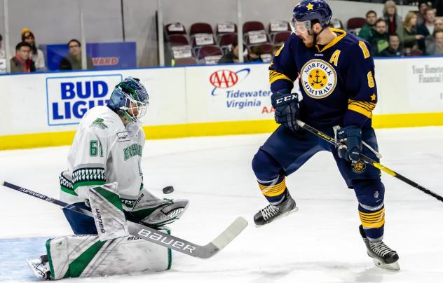 Norfolk Admirals forward Domenic Alberga takes a shot against the Florida Everblades