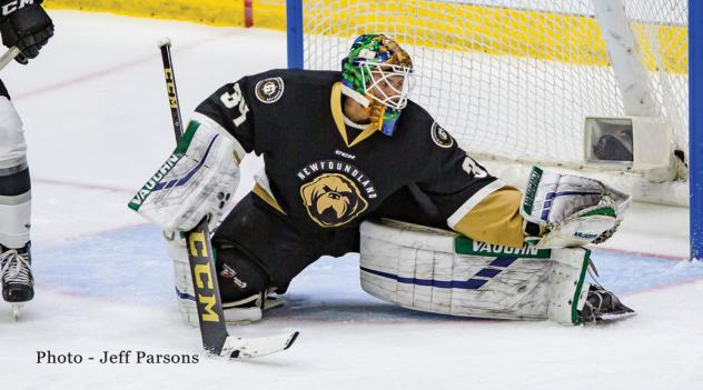 Newfoundland Growlers goaltender Michael Garteig
