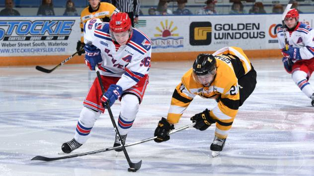 Kitchener Rangers centre Rickard Hugg handles the puck against the Kingston Frontenacs