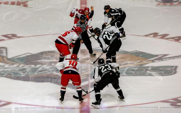 Utah Grizzlies face off with the Allen Americans