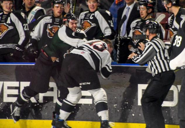 Utah Grizzlies and Rapid City Rush fight