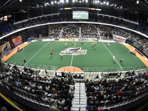 A New England Black Wolves game