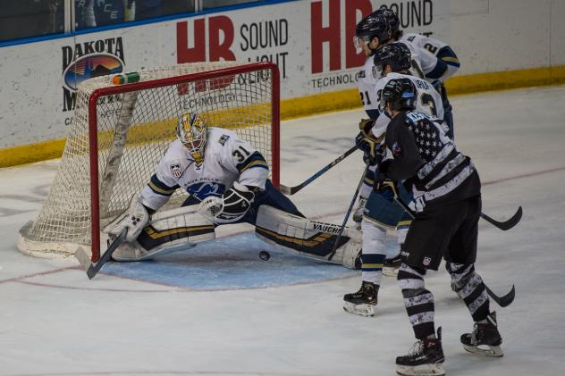 Sioux Falls Stampede goaltender Alec Calvaruso vs. the Fargo Force