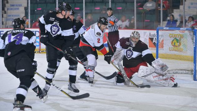 Matt Salhany of the Adirondack Thunder in a sea of Reading Royals