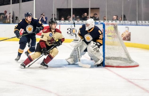 Norfolk Admirals goaltender Jeremy Brodeur against the Atlanta Gladiators