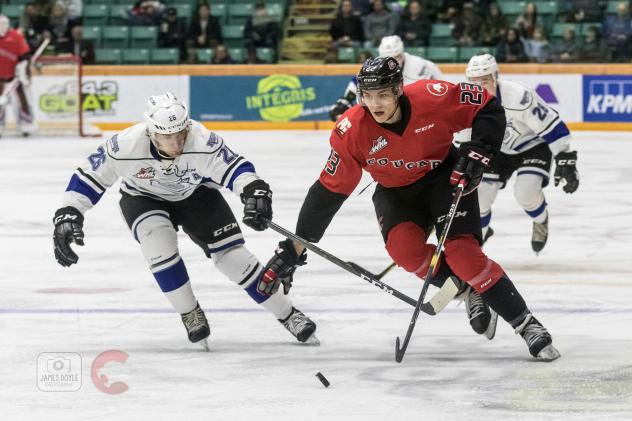 Prince George Cougars and Victoria Royals chase the puck