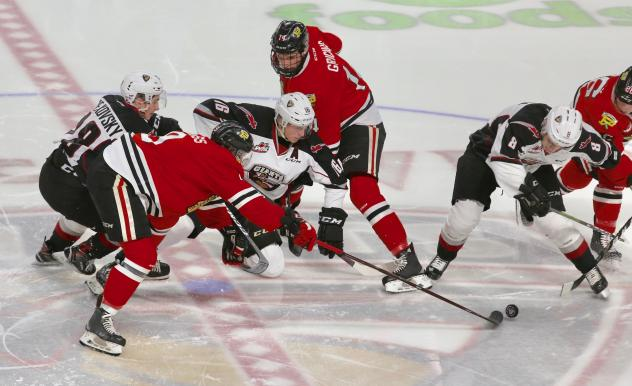 Davis Koch of the Vancouver Giants vies for the pucks against the Portland Winterhawks