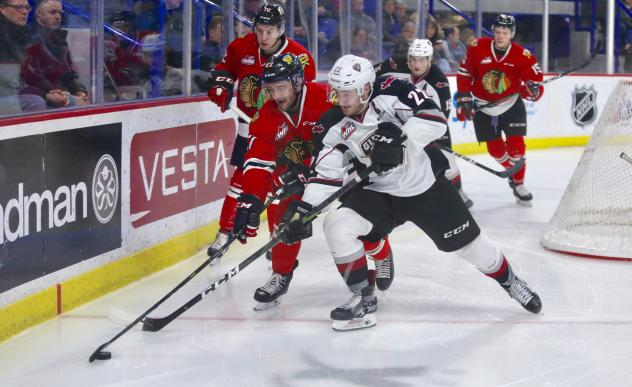 Vancouver Giants right wing Jared Dmytriw against the Portland Winterhawks