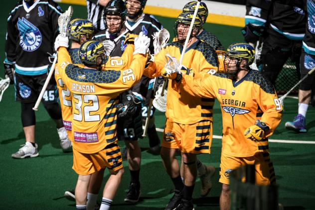 Georgia Swarm celebrate a goal against the Rochester Knighthawks