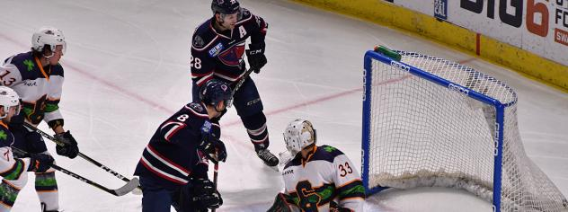 South Carolina Stingrays score against the Greenville Swamp Rabbits