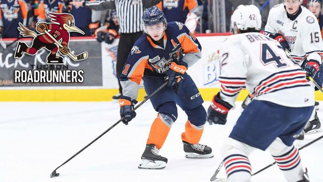 Flint Firebirds defenseman Dennis Busby